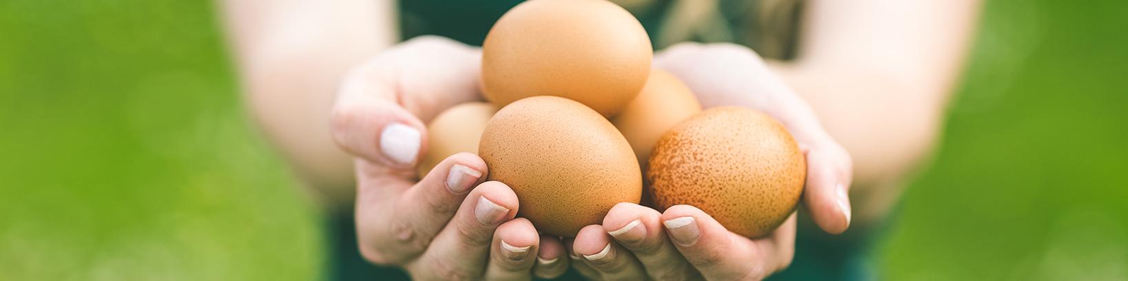 Egg freezing may benefit those with endometriosis
